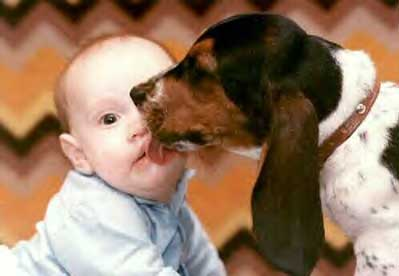 Kissy, licky-licky pic from Animals, Kids