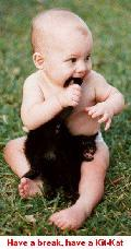 Baby biting a kitty